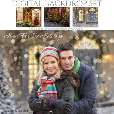 Ashe Design 16x20 Digital Backdrop Set - Home For The Holidays AFTER
