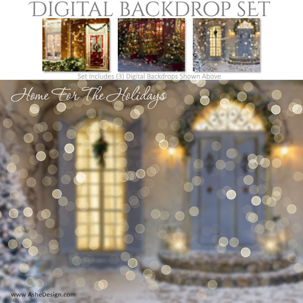 Ashe Design 16x20 Digital Backdrop Set - Home For The Holidays BEFORE
