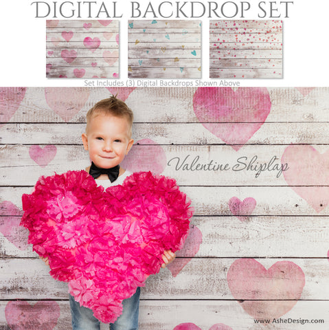Ashe Design 16x20 Digital Backdrop Set - Valentine Shiplap AFTER