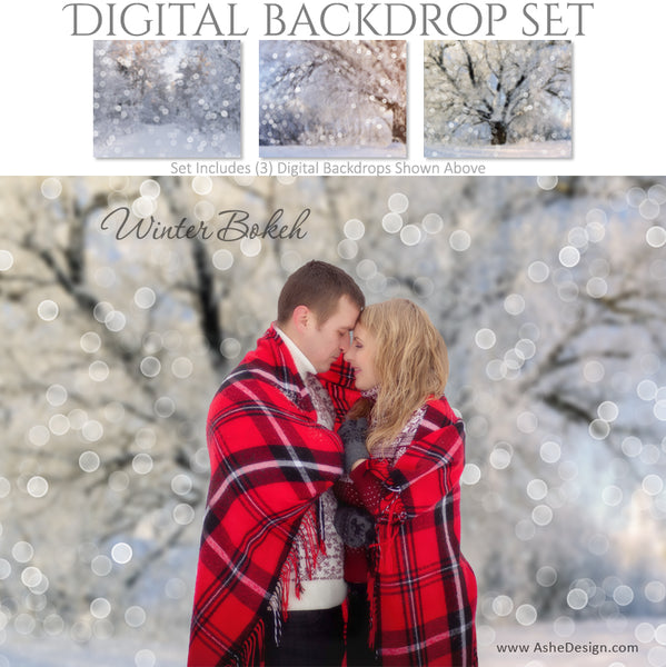 Ashe Design 16x20 Digital Backdrop Set - Winter Bokeh AFTER