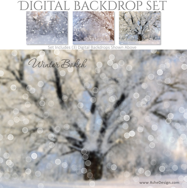 Ashe Design 16x20 Digital Backdrop Set - Winter Bokeh BEFORE