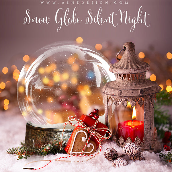 Ashe Design 8x10 Digital Backdrop Set - Snow Globe Silent Night BEFORE