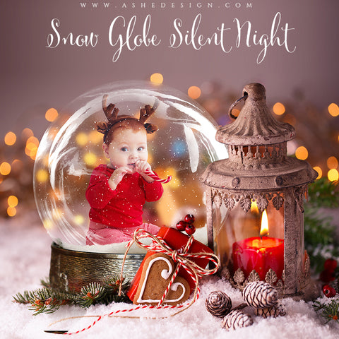 Ashe Design 8x10 Digital Backdrop Set - Snow Globe Silent Night AFTER