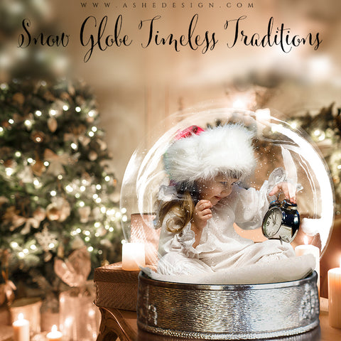 Ashe Design 8x10 Digital Backdrop Set - Snow Globe Timeless Traditions AFTER