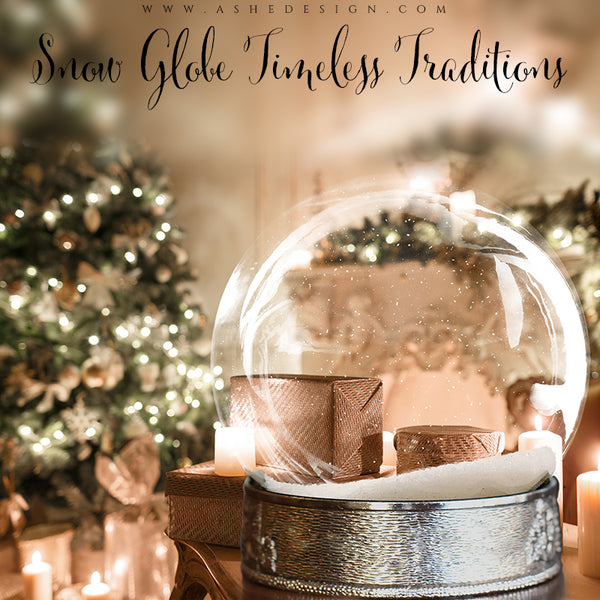 Ashe Design 8x10 Digital Backdrop Set - Snow Globe Timeless Traditions BEFORE