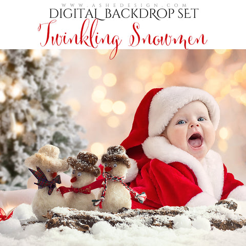 Digital Props 16x20 Backdrop Set - Twinkling Snowmen