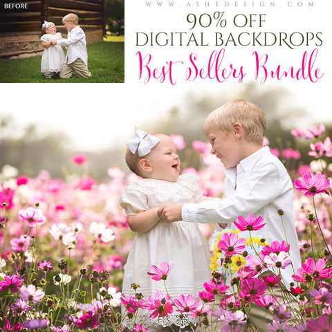 2016 Best Sellers Bundle - Digital Backdrops