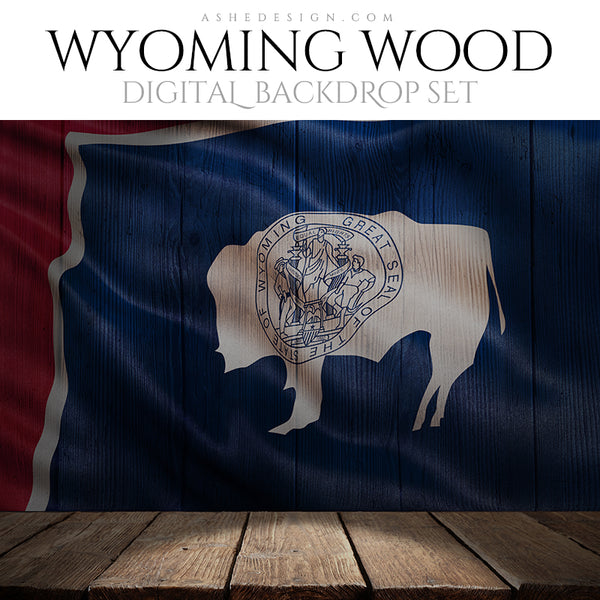 Ashe Design Digital Backdrop State Flag - Wyoming