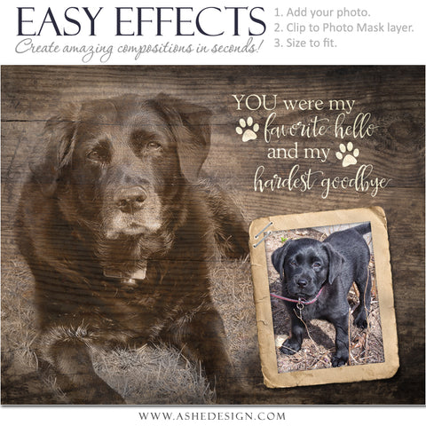 Easy Effects - Hardest Goodbye Pet Memorial