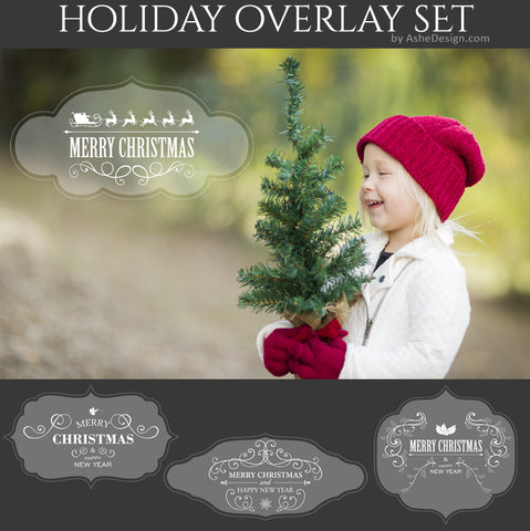 Designer Gems - Holiday Overlays - Ornate Greetings