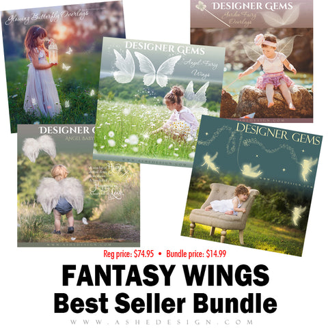 Best Sellers Bundle - Fantasy Wing Overlays