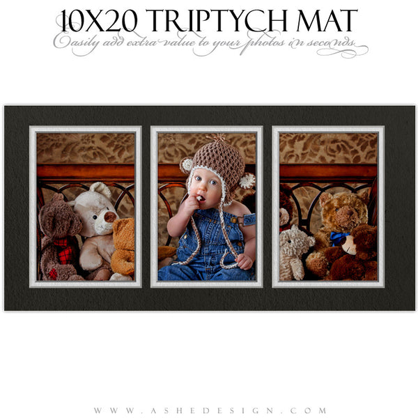 Ashe Design | Photoshop Action | 10x20 Triptych Mat1