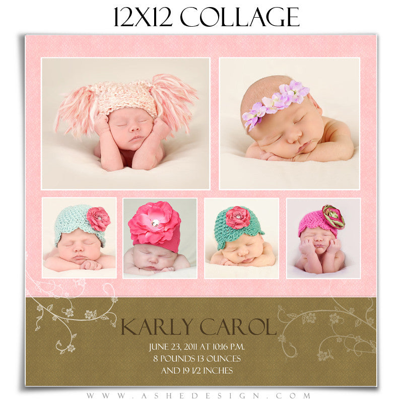 Newborn Collage Template (12x12) - Karly Carol
