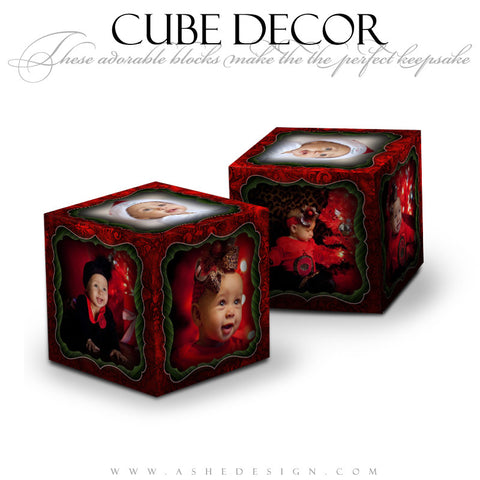 Cube Decor Design - Mistletoe