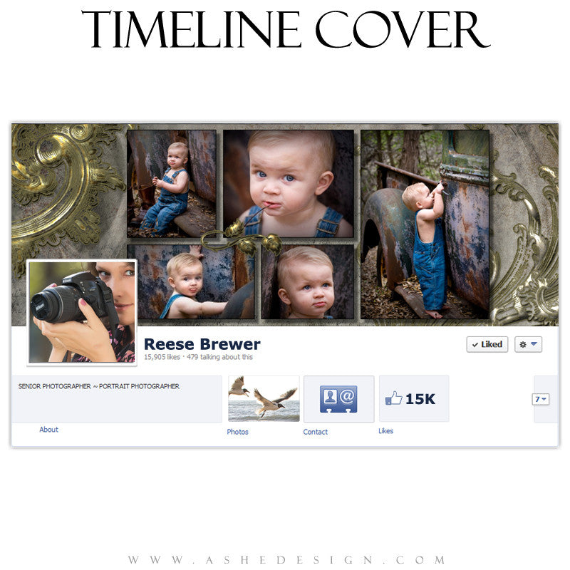 Timeline Cover Design - Antique Bling