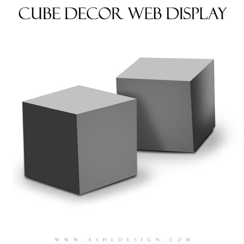 Ashe Design | 4x4 Cube Decor Mockup