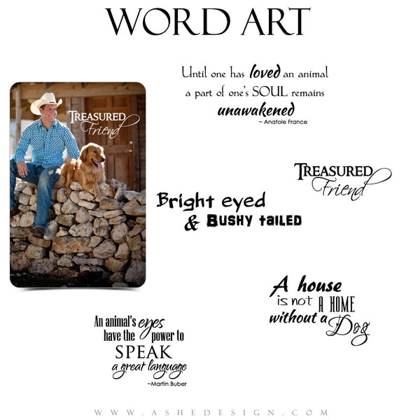 Pet Word Art Collection | Man's Best Friend