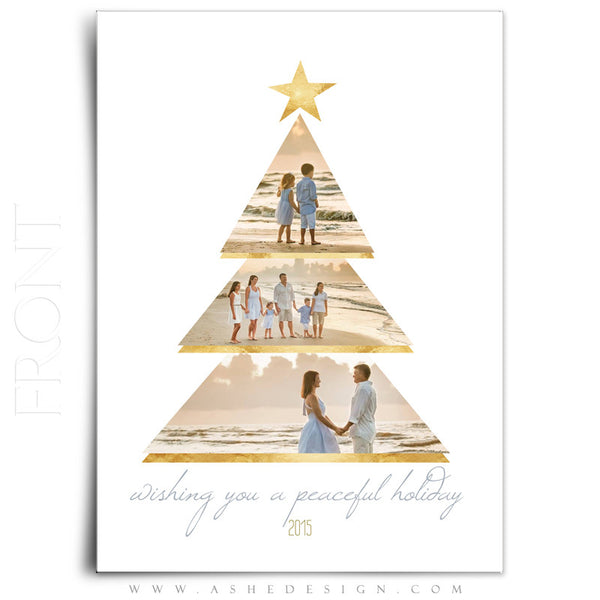 Christmas Card 5x7 Flat | Gold Foil Holiday front