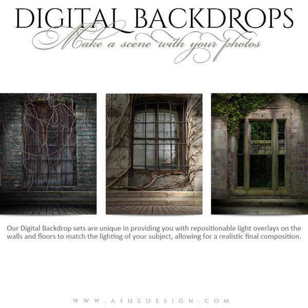 Ashe Design | Digital Backdrops | 16x20 | Window Ivy