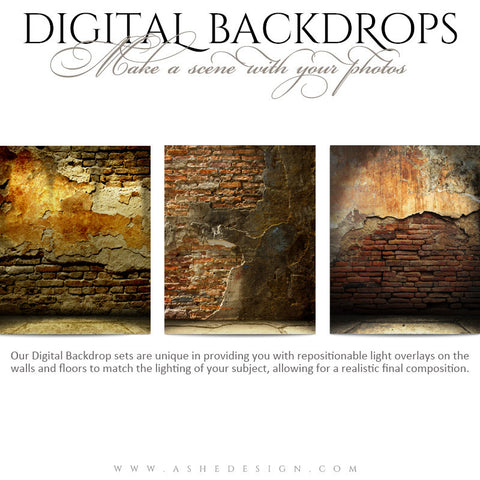 Ashe Design | Digital Backdrops | 16x20 | Brick Grunge