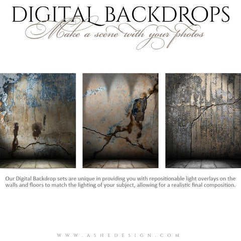 Ashe Design | Digital Backdrops | 16x20 | Cracked Grunge