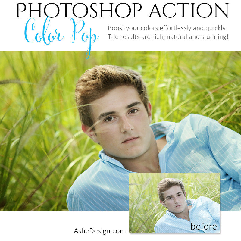 Photoshop Action | Pure Palette - Color Pop1