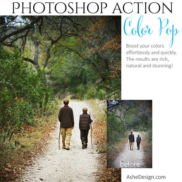 Photoshop Action | Pure Palette - Color Pop2