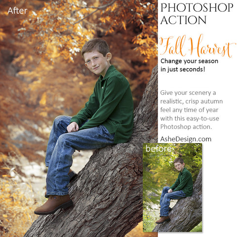 Photoshop Action | Fall Harvest1