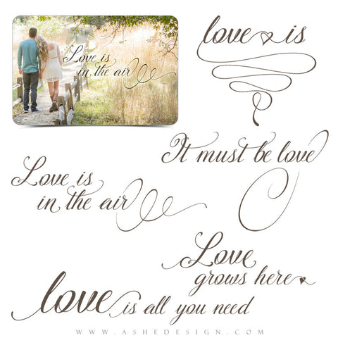 Ashe Design | Word Art Overlays | Love Is