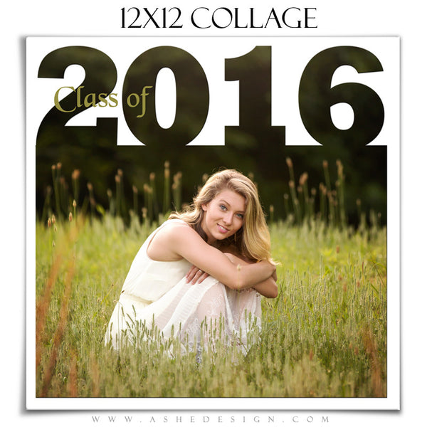 Ashe Design | 12x12 Photoshop Collage Template | Class of 2016