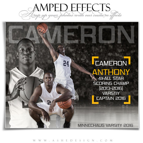 Ashe Design | Amped Effects | Photoshop Templates | Basketball Sports Posters | Full Court