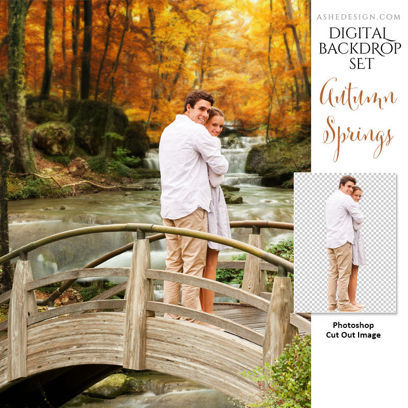 Ashe Design | Photoshop Template | Digital Backdrop Set | 11x14 | Autumn Springs