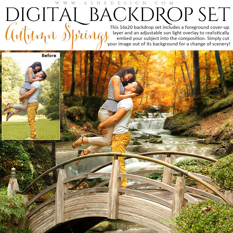 Ashe Design | Digital Backdrop Set | Autumn Springs