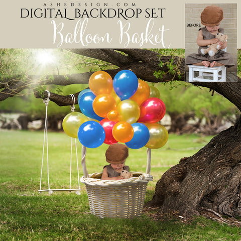 Ashe Design | Photoshop Template | Digital Backdrop Set | 16x20 | Balloon Basket