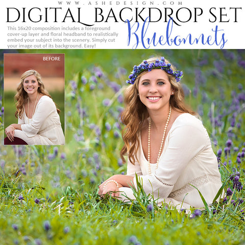 Ashe Design | Digital Backdrop Set | Bluebonnets
