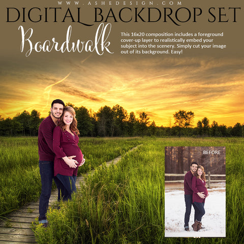 Ashe Design | Digital Backdrop Set | Boardwalk