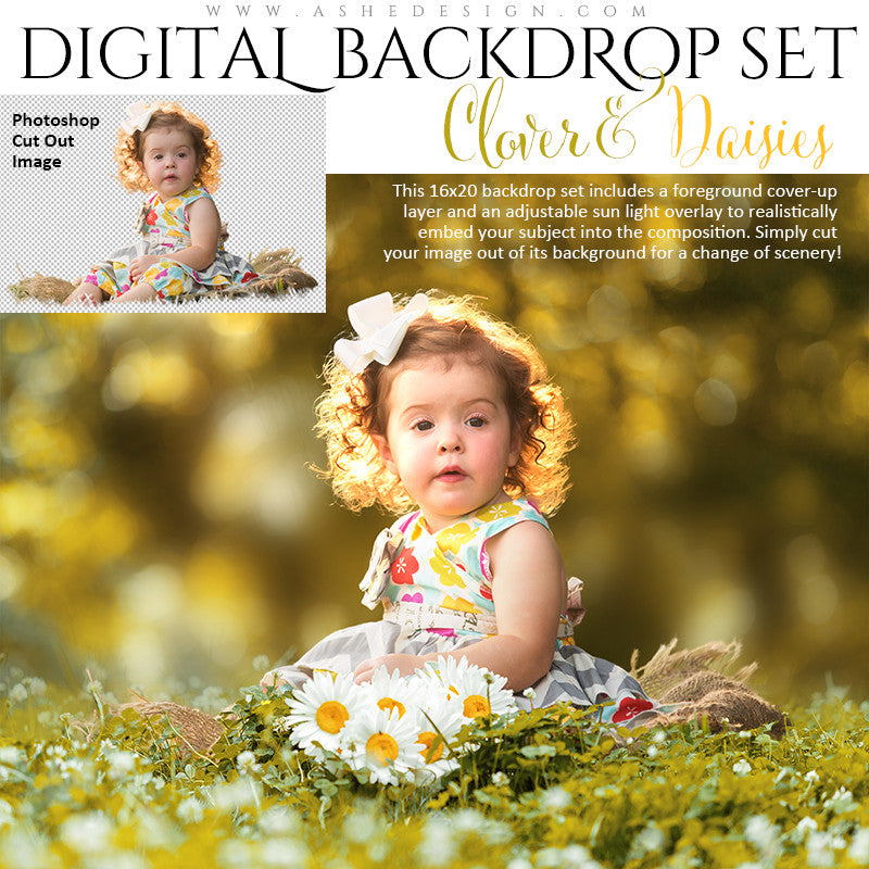 Ashe Design | Digital Backdrops | Clover & Daisies