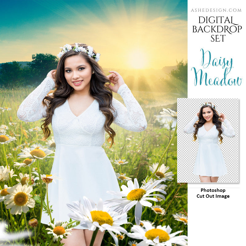 Ashe Design | Photoshop Template | Digital Backdrop Set | 11x14 | Daisy Meadow