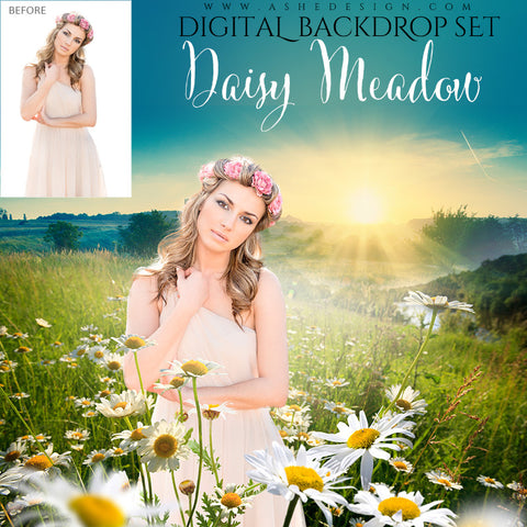 Ashe Design | Digital Backdrop Set | Daisy Meadow | 16x20 | White Flower Field