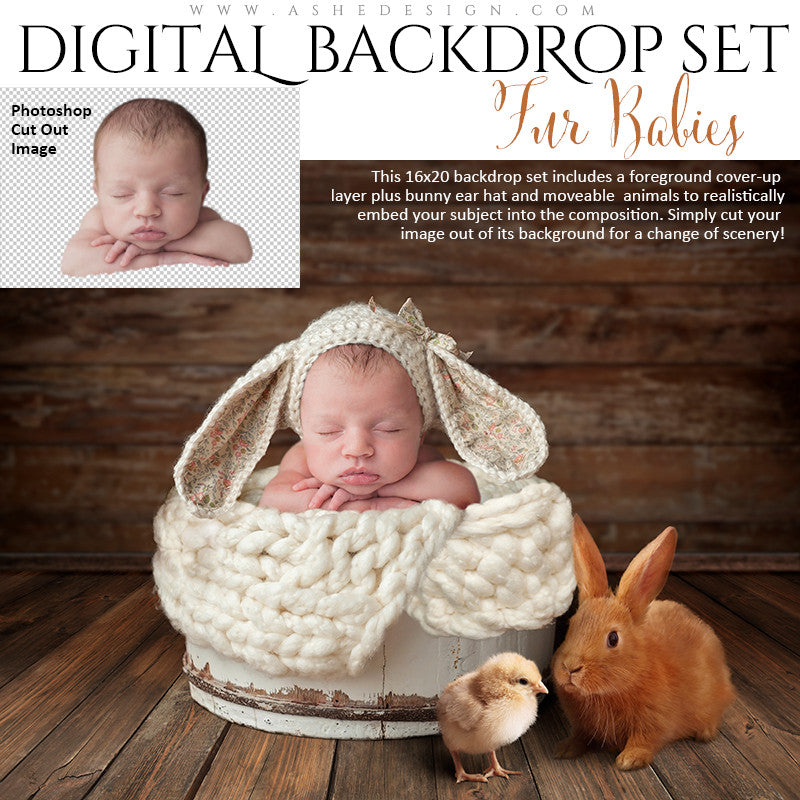 Ashe Design | Digital Backdrop Set | Fur Babies