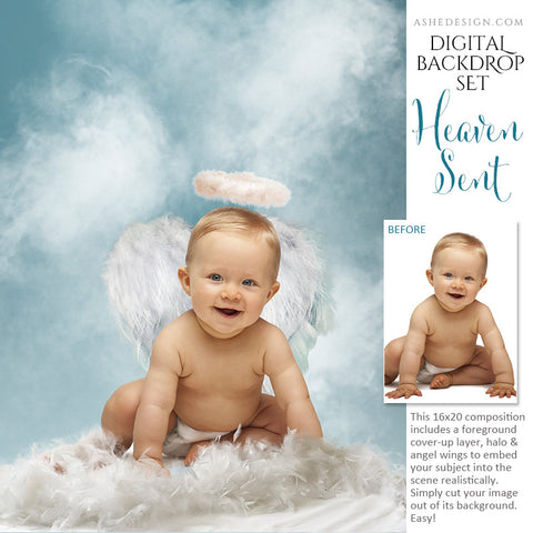 Ashe Design | Digital Backdrop Set | Heaven Sent