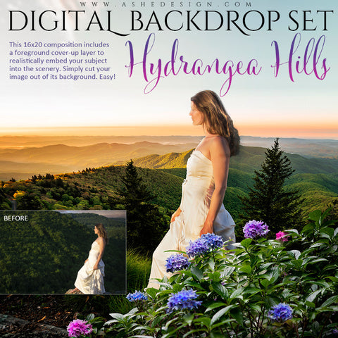 Ashe Design | Digital Backdrop Set | Hydrangea Hills