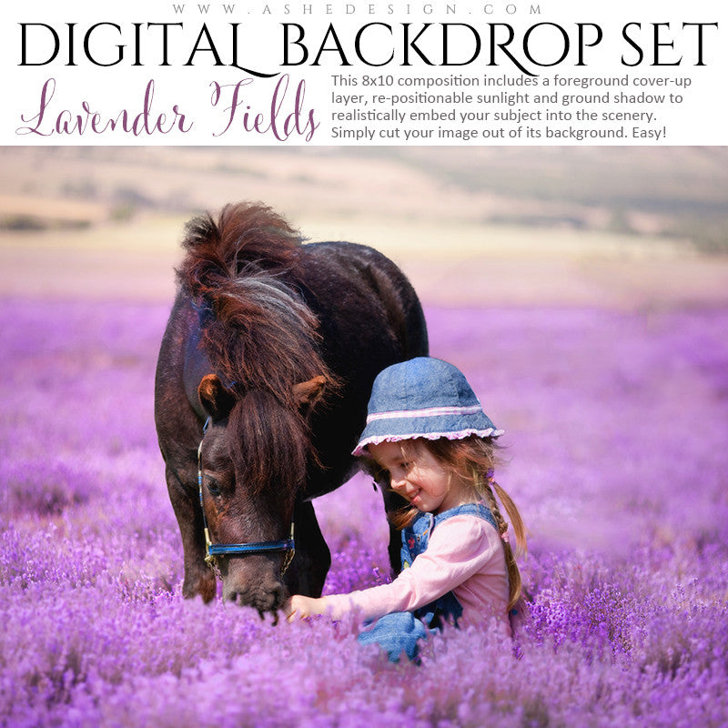 Ashe Design | Digital Backdrop Set |  8x10 | Lavender Fields
