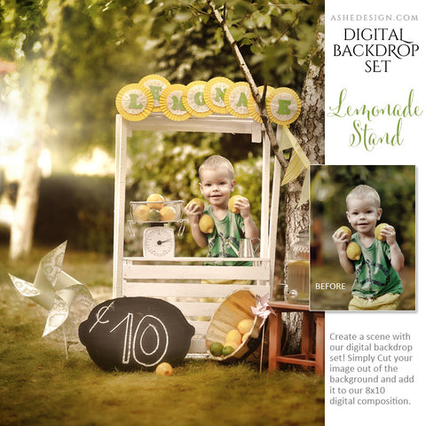 Ashe Design | Digital Backdrop Set |  8x10 | Lemonade Stand