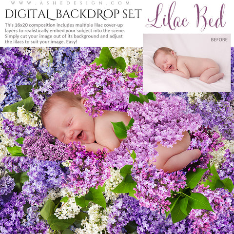 Ashe Design | Digital Backdrop Set | Lilac Bed