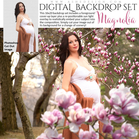 Ashe Design | Digital Backdrop Set | Magnolia Tree Blossoms