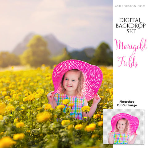 Ashe Design | 11x14 Digital Backdrop Set | Marigold Fields | Photoshop Templates