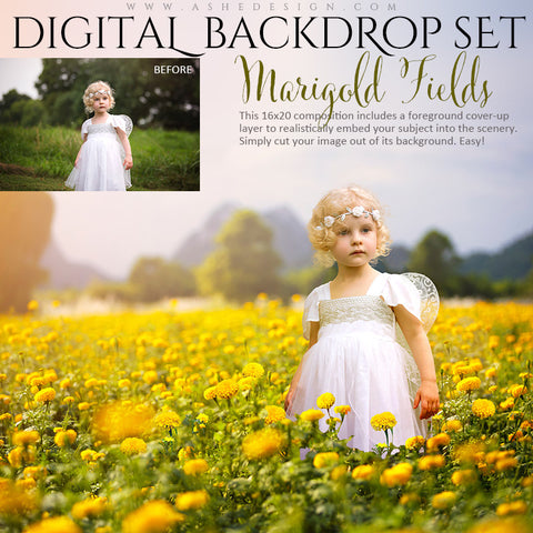 Ashe Design | Digital Backdrop Set | Marigold Fields