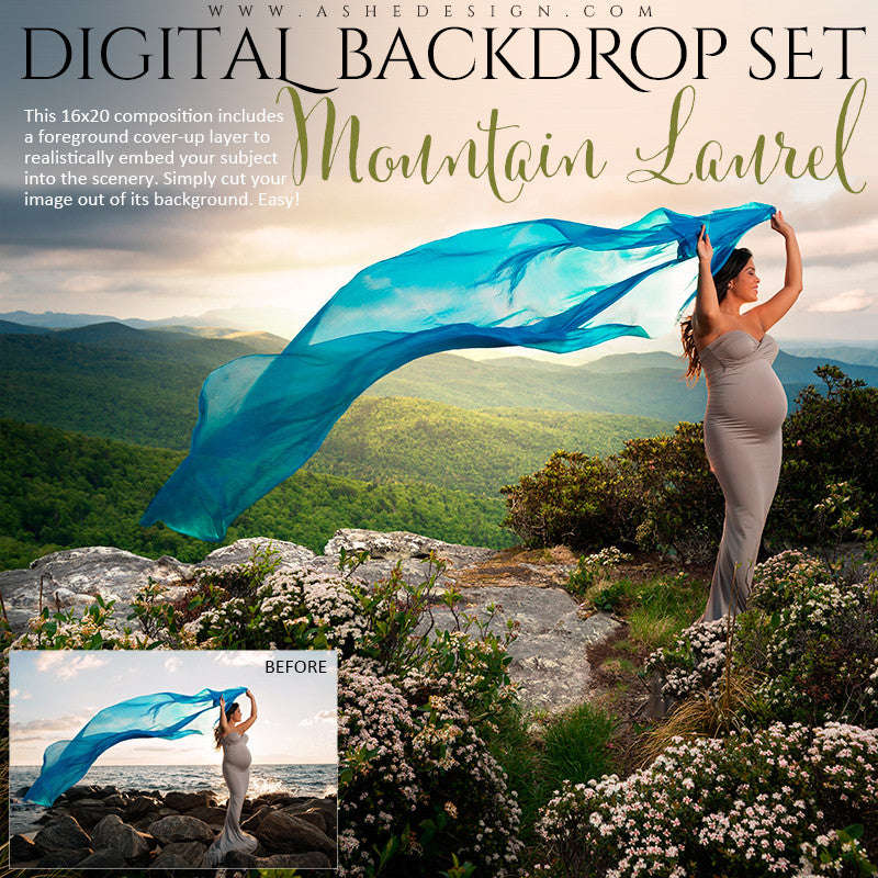 Ashe Design | Digital Backdrop Set | Mountain Laurel