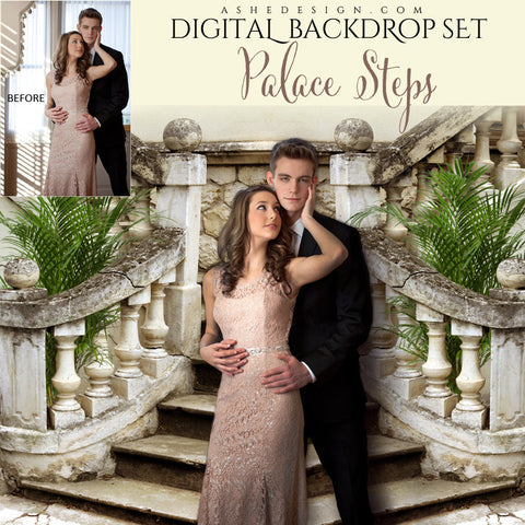 Ashe Design | Digital Backdrop Set | Palace Steps